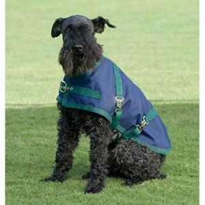 Riders International Dog Turnout Sheet