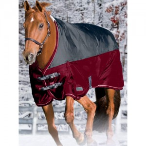 Riders International Northwind Light Turnout Blanket