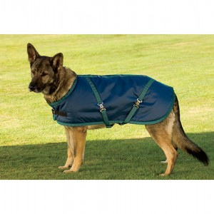 Riders International Fleece Lined Dog Blanket