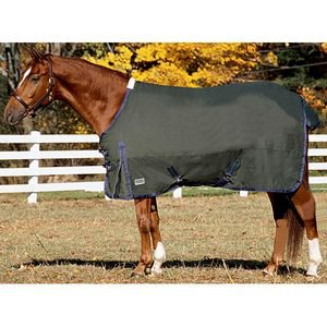 Riders International Supreme Medium Weight Blanket