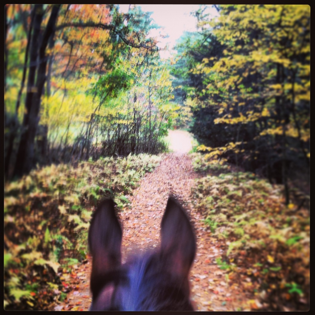 fall riding apparel