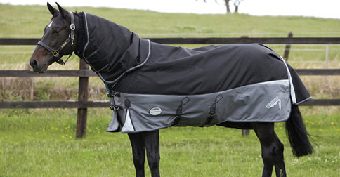 Winter Horse Blankets >> Perfect Winter Horse Blankets For Every Horse S Personality
