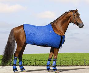 hyperkewl horse blanket