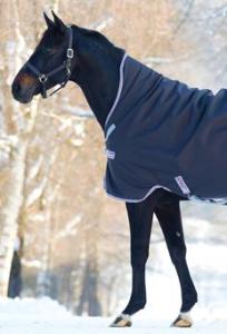 horse blanket leg arches