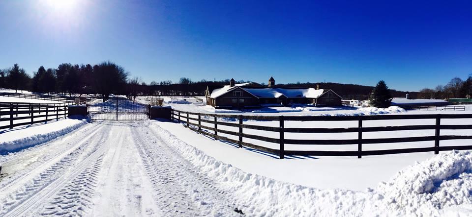 winter barn supplies