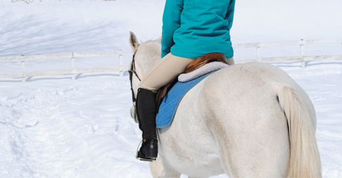 winter breeches