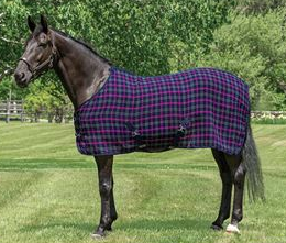 chill chaser plaid