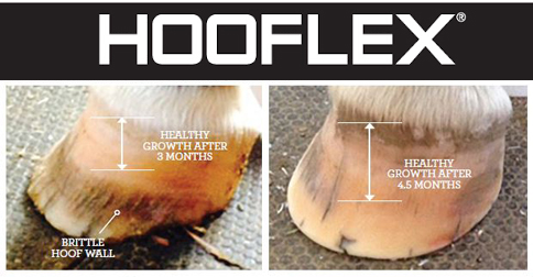 hooflex supplement