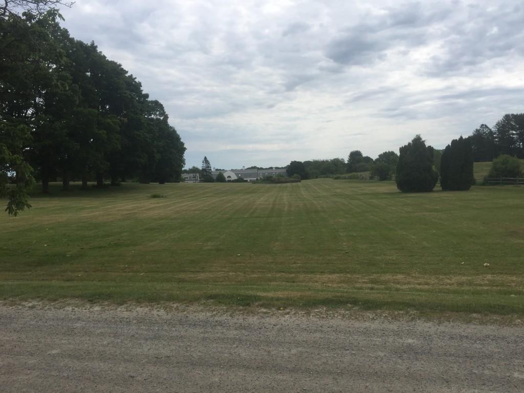 brackenside field