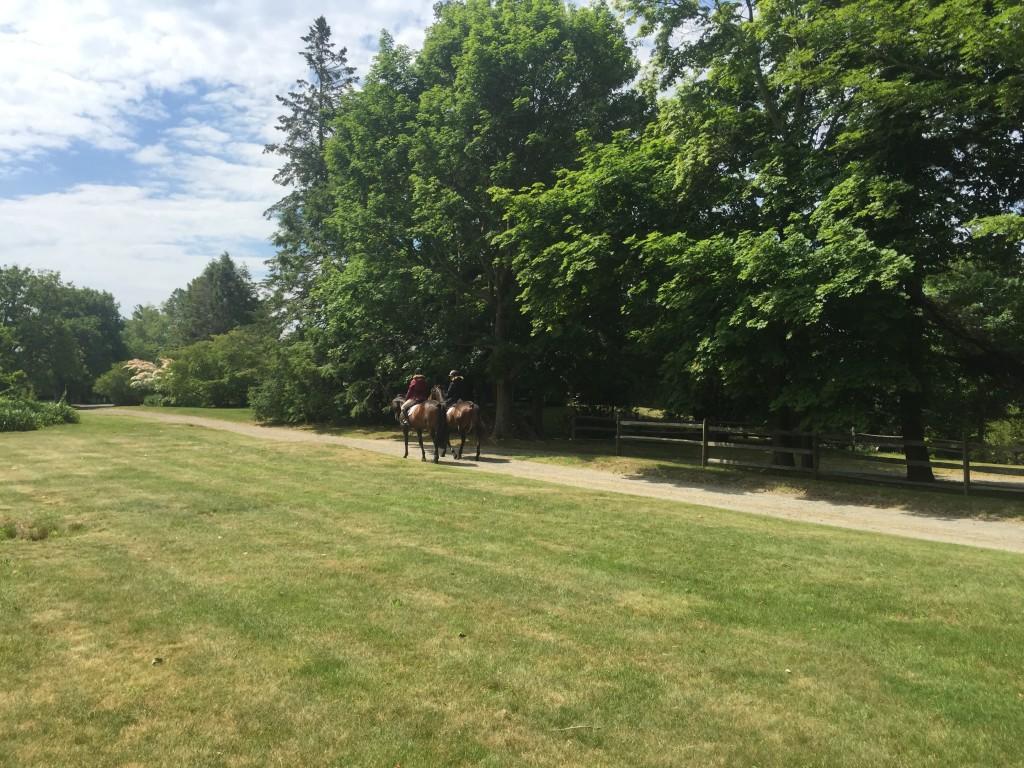 riding at brackenside