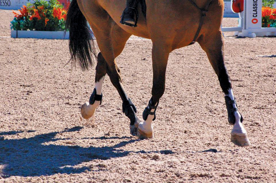 Equestrian Services International Footing