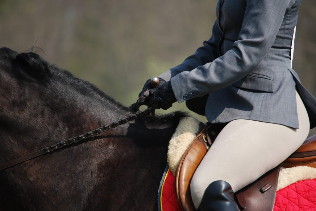 English rider dressed in show attire riding bay horse.