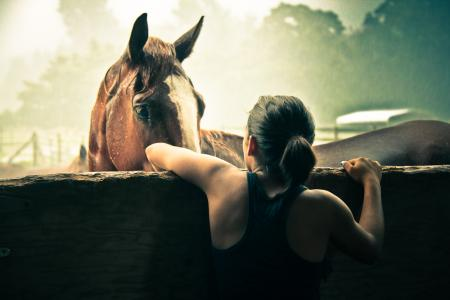 Girl in tank top looking over a fence at a horse on a summer day.