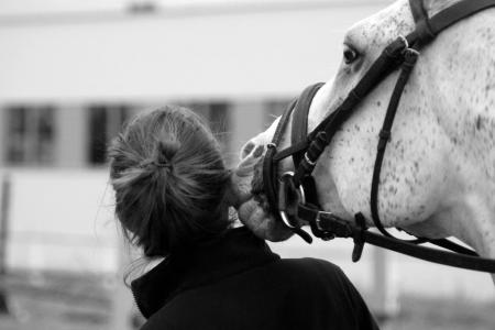 Black and white image of a grey horse wearing a bridle nuzzling rider's head.