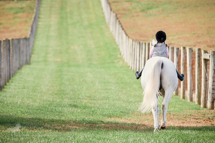 Young girl riding white pony on a summer trail ride.